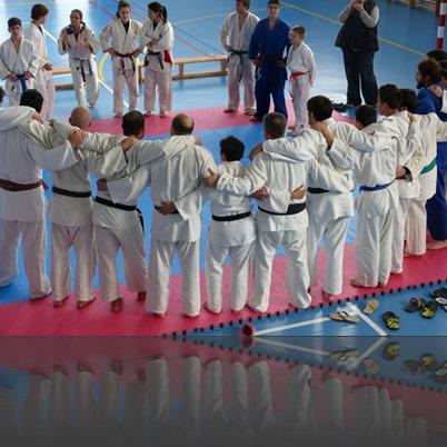 rotllana judoka