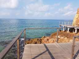 Maravillas del mar en Salou