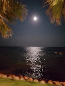 Sitges, el mar de noche