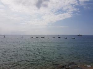 barcas al horizonte